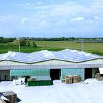 pannelli fotovoltaici SDD